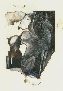 dragon drawing a bit burnt