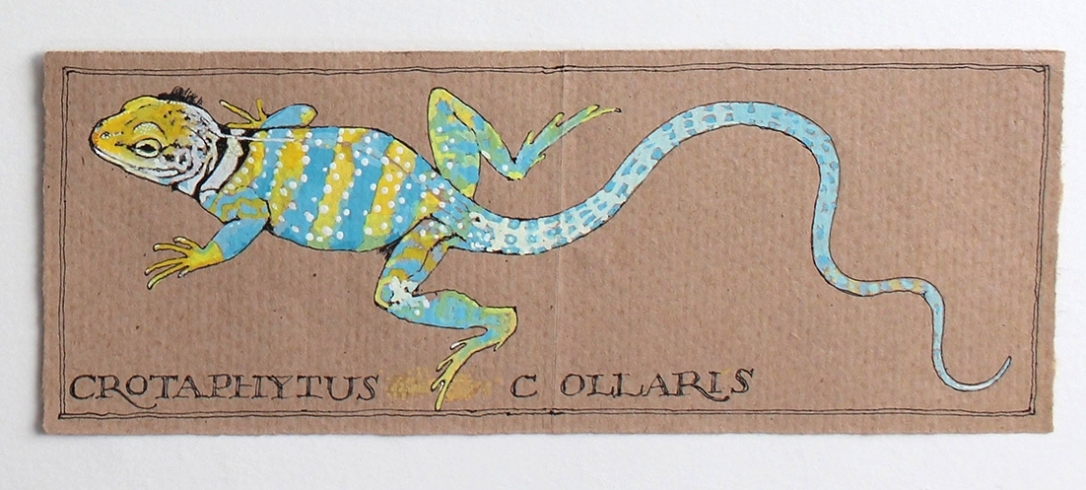 Lizard on Brown Paper